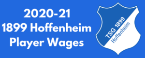 1899 Hoffenheim 2020-21 Player Wages